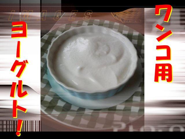 1246866793847470.jpg