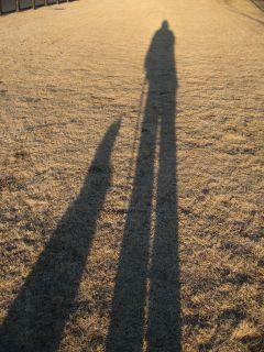 silhouette1.jpg