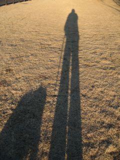 silhouette2.jpg
