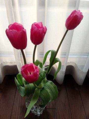 flowers49.jpg
