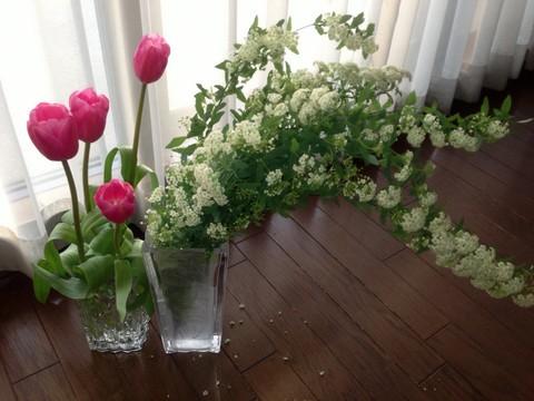 flowers50.jpg