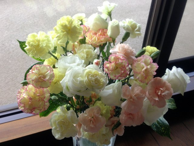 flowers56.jpg