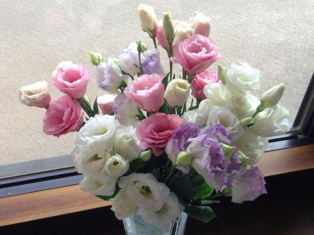 flowers58.jpg