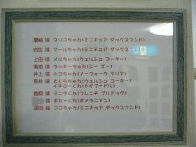 本日のお泊り客.jpg