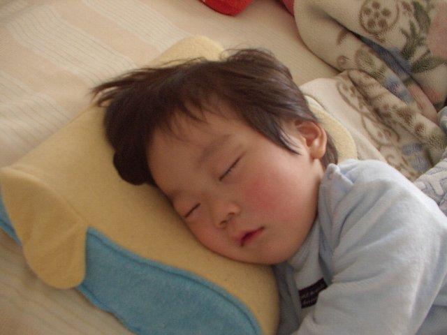 リョウガクンの寝顔