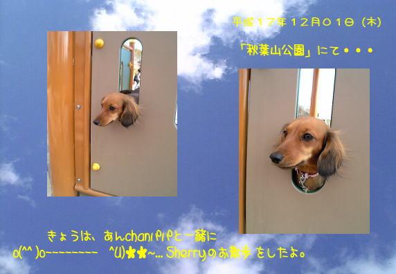 12-1_akihasankouen.jpg