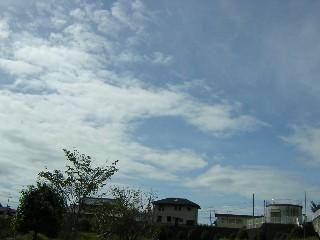 台風の後2