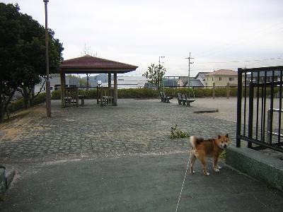くすのき公園1