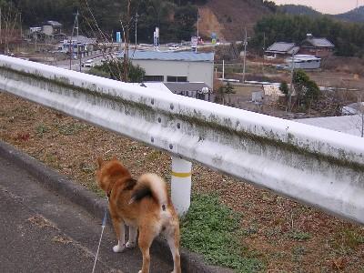 くすのき公園3