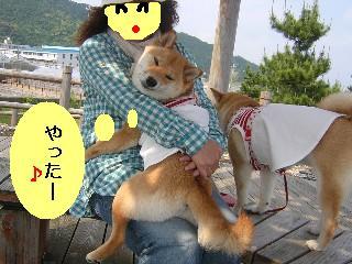 抱っこ(イロちゃん)