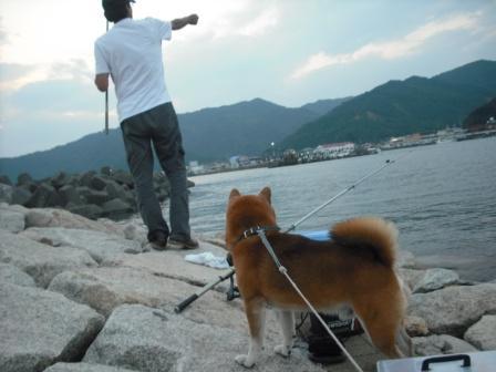 お父さんと釣り1