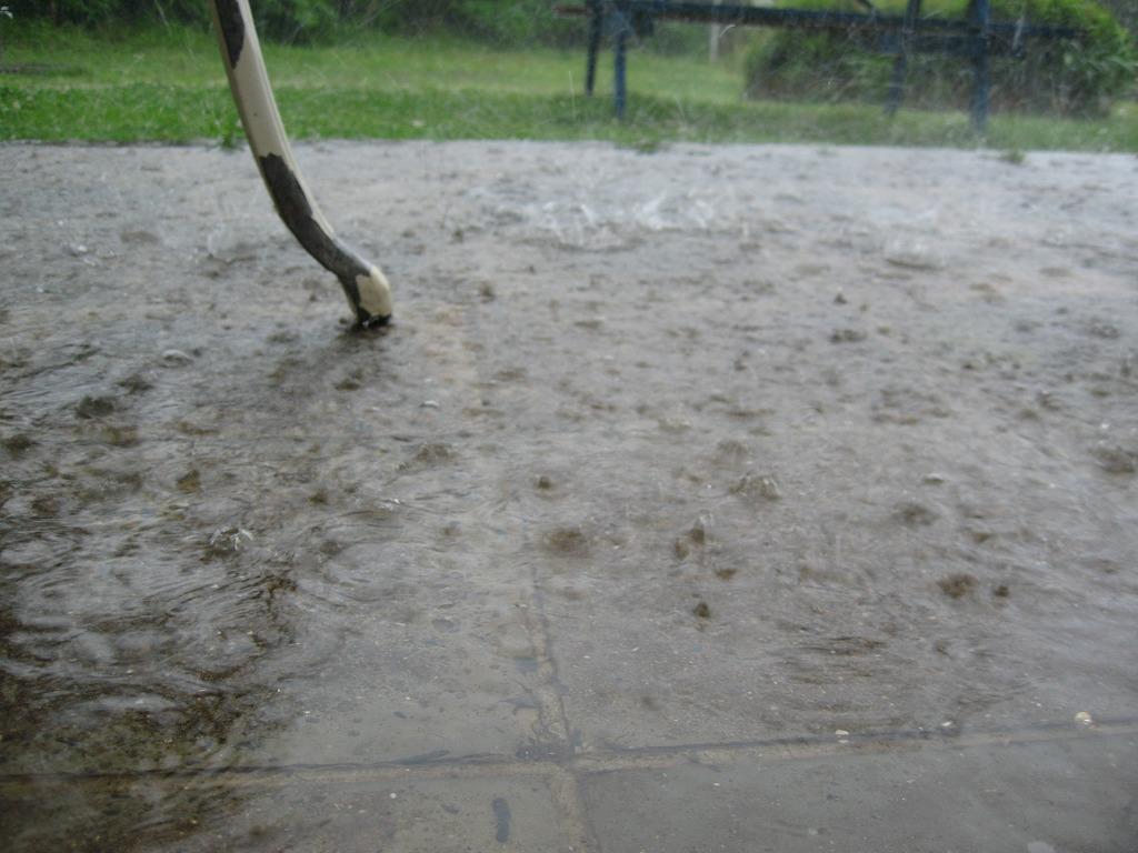 梅雨の時期。