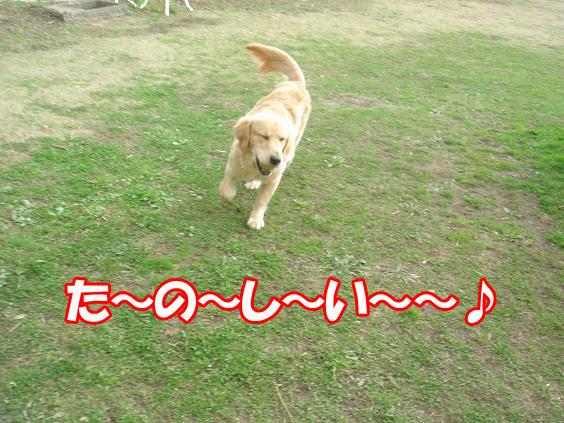 た〜の〜し〜い♪
