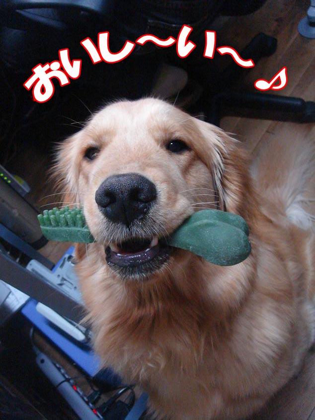 おいし〜い〜!!