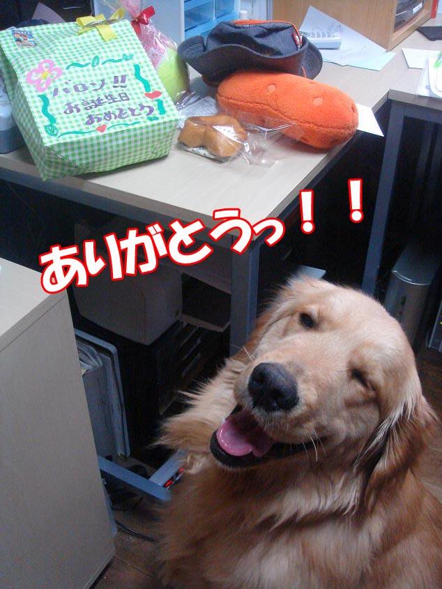ありがとうっ!!!