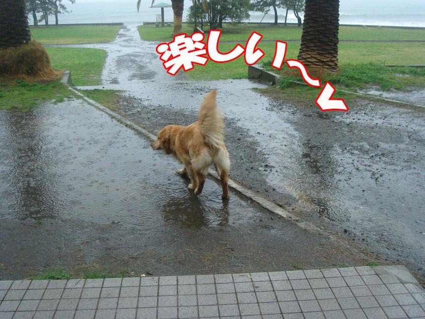 水大好きっ!