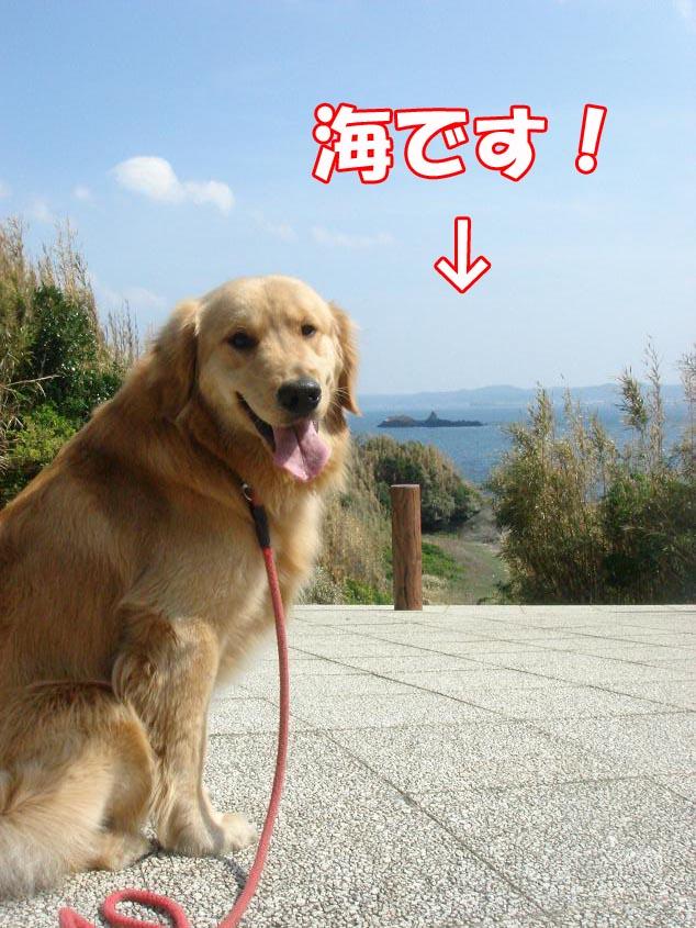 海だ〜っ!
