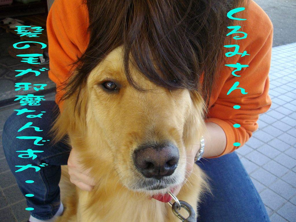 髪の毛が邪魔