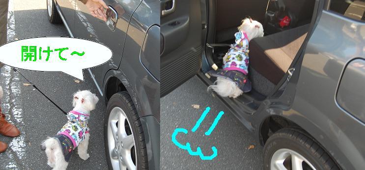 車好き.jpg