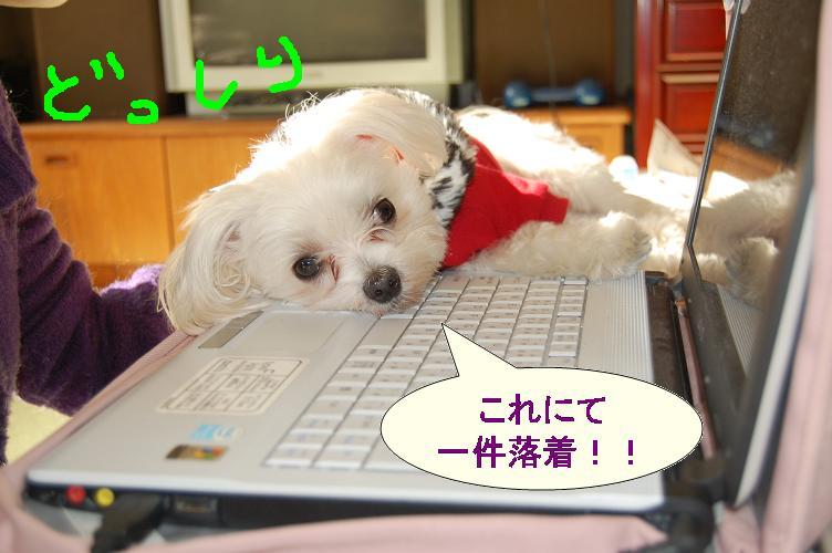 枕代わりのパソコン.jpg