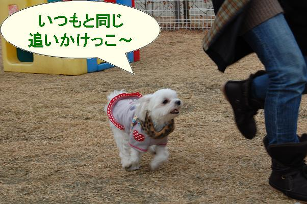 神社公園と同じ光景.jpg