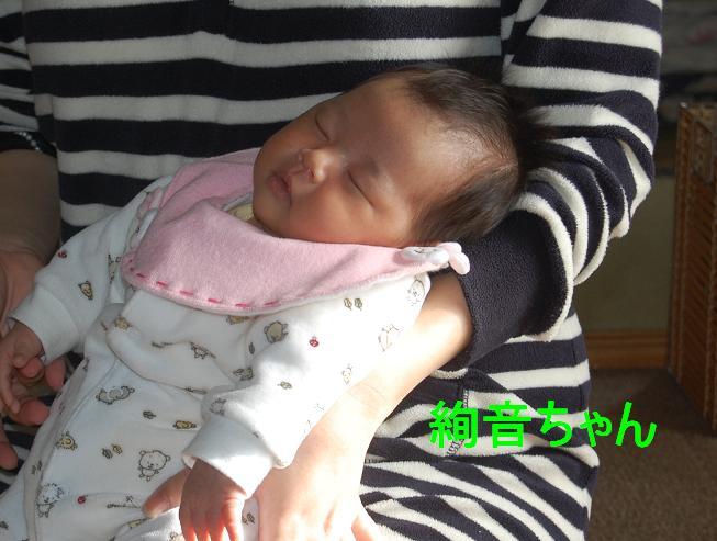 初赤ちゃん.jpg