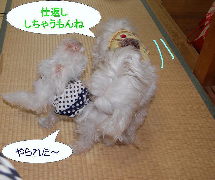 みいなの反撃.jpg