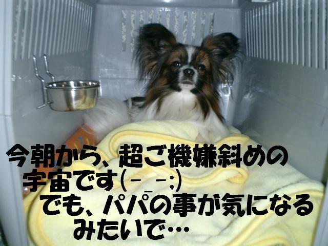 気になるなぁ〜.jpg