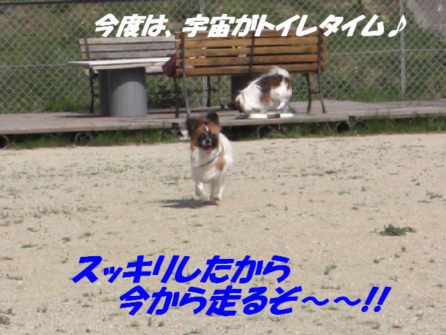 走るぞ〜!!.jpg