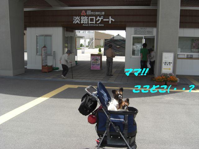 ここどこ(・・?.jpg