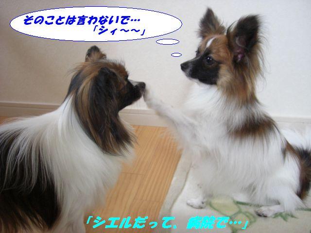 「シィ〜〜」.jpg
