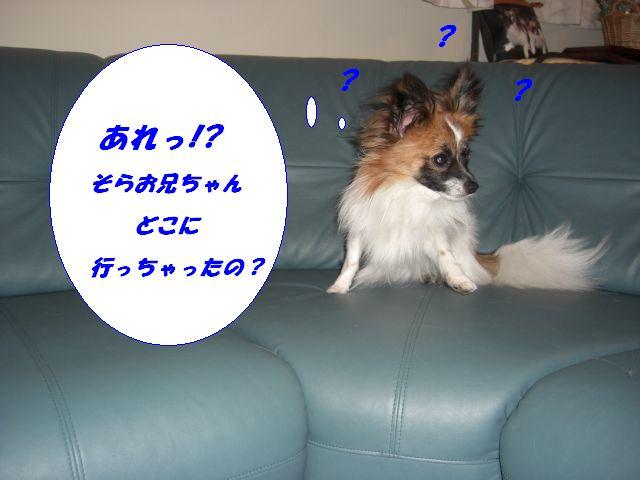 1183954199388943.jpg