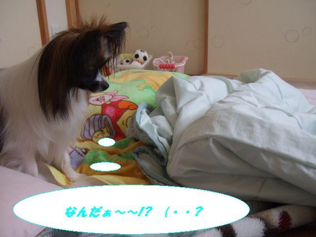 なんだぁ〜?.jpg