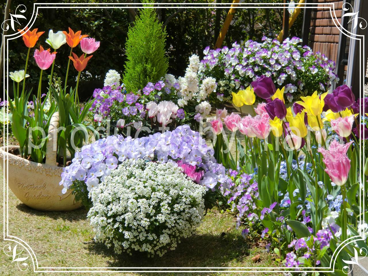 nana's  garden 1☆