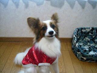 2006.12.22サンタさんの服