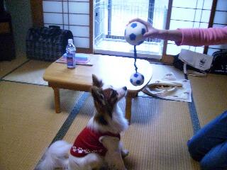 2007.1月名古屋で〜3