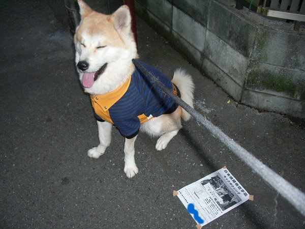 忘年会 in asian.d 6