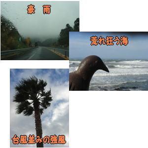 200701074.jpg