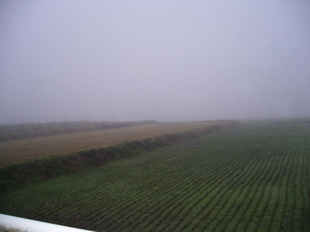 見事な濃霧ですっ!