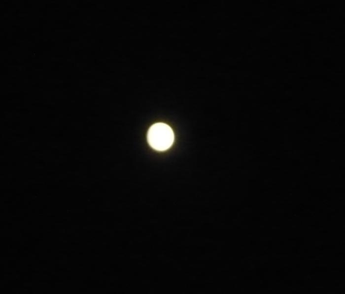 本当に満月かぁ〜?