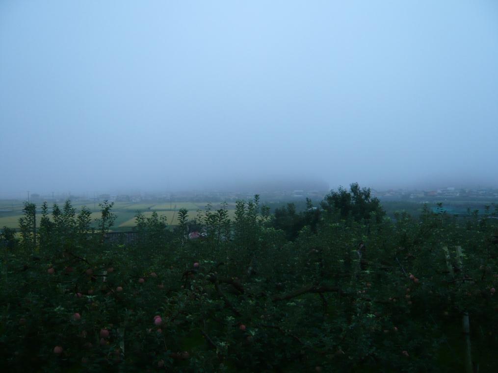 村は霧の中!!