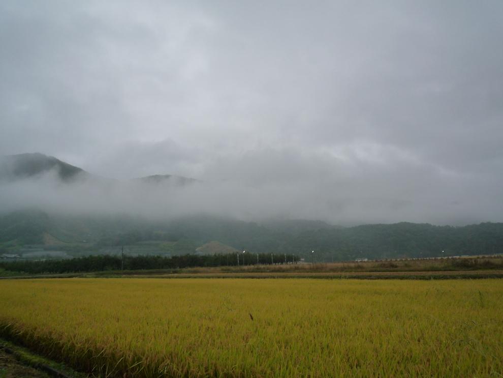 霧が深いですねぇ〜☆