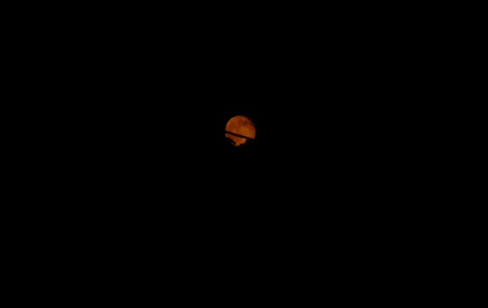 お月様が出てきたヨ!