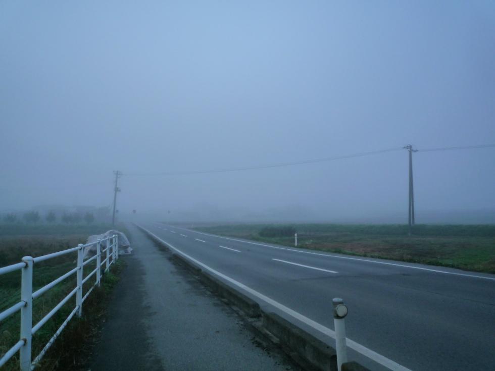 また、霧が!