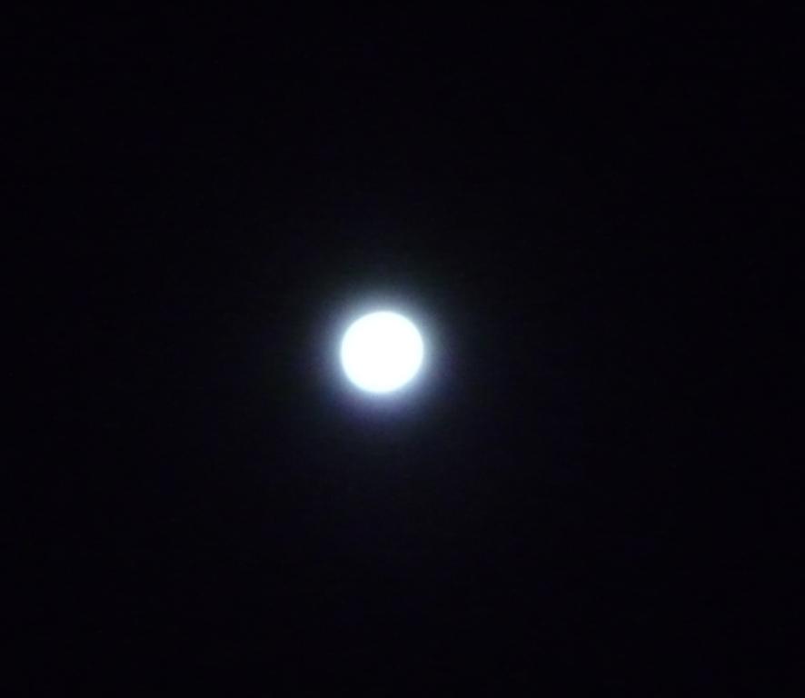綺麗なお月様だわ!