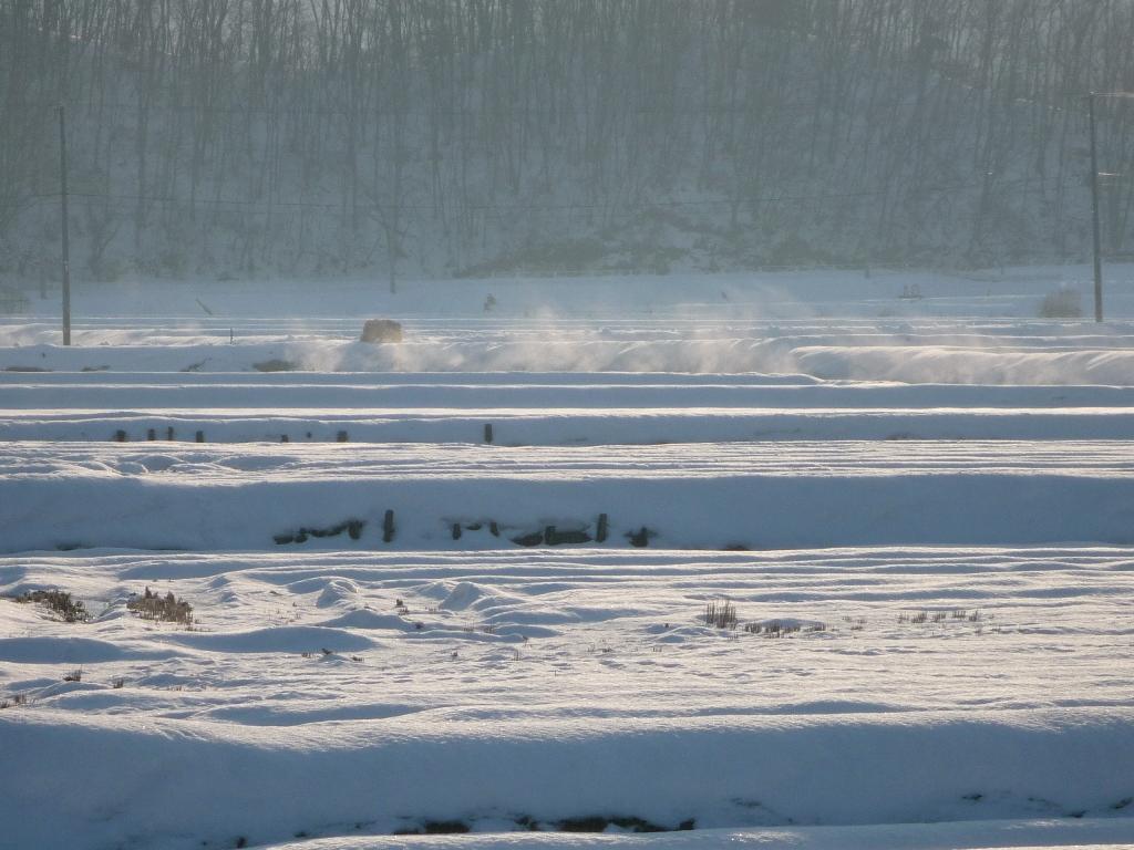 冬の風景�