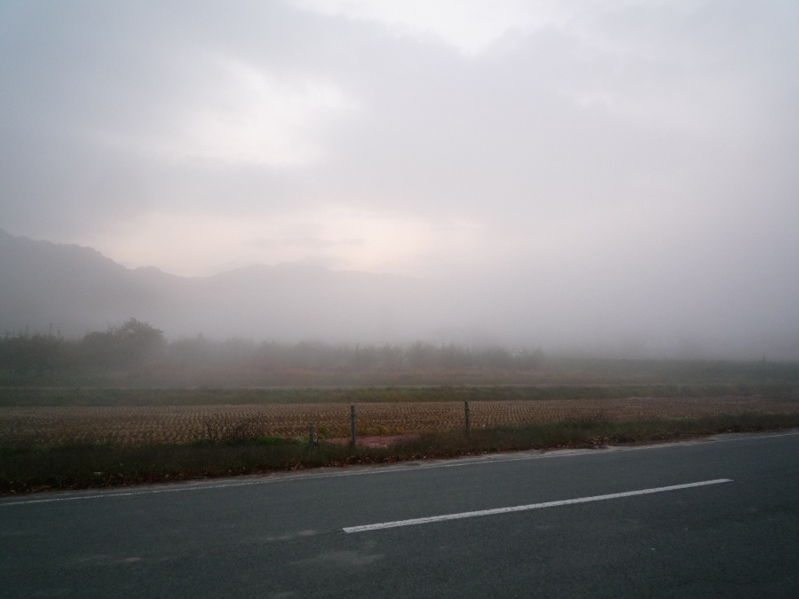もう!霧はいらん!!
