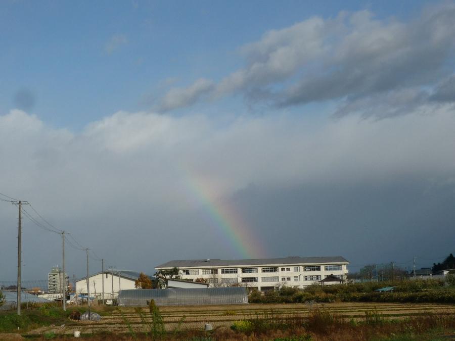 虹も出たヨ♪