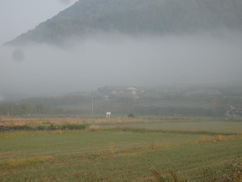 キャラメル家の所だけ、霧が・・・!