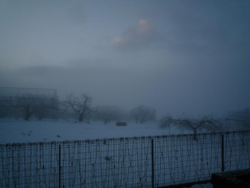 霧が〜!寒い!